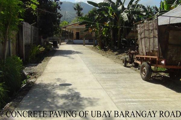 ubay-brgy-road8582128C-E3DE-DF13-23E6-FF34E9EE4F42.jpg